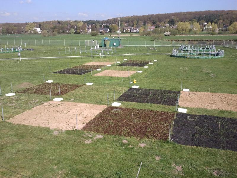 Biochar research grounds in Linden-Leihgestern