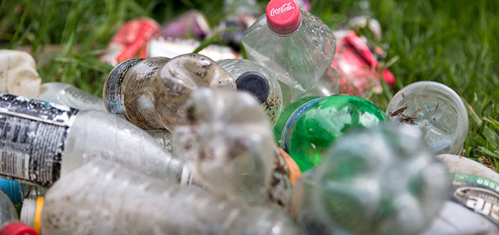 Japanese scientists have discovered a plastic-eating strain of bacteria that can fully degrade plastic. It could one day be used as a new technique to recycle plastic. (Image credit: Greens MPs, flickr/Creative Commons)