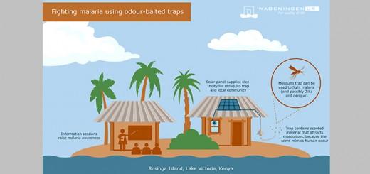 malaria traps